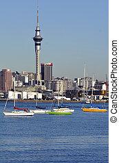 centro cidade, -, auckland, skyline, zelândia, novo