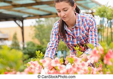 centro jardim, mulher, trabalhando, em, cor-de-rosa, flowerbed