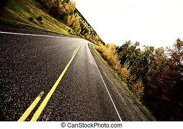 centro, linee, autunno, lungo, strada, pavimentato