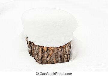 ceppo albero, neve, profondo, coperto