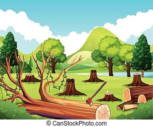 ceppo, foresta, albero, scena