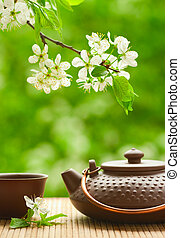 Ceramic teapot and flowering tree branch