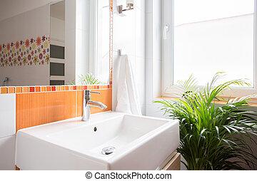 Ceramic wash basin in modern color toilet