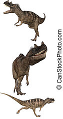 Ceratosaurus - a Ceratosaurus Dinosaurs from North america,...