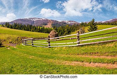 cerca de madera, por, el, camino de tierra, en, herboso, colinas