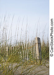 cerca madeira, ligado, praia.