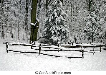 cercas, em, a, neve