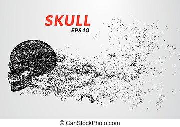 cerchi, illustration., cranio, particles., vettore, points., consiste
