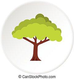 cercle, arbre, icône