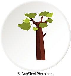 cercle, baobab, icône