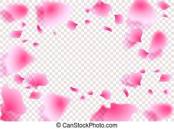 cercle, illustration, transparent, shadow., roses, pétales, ...