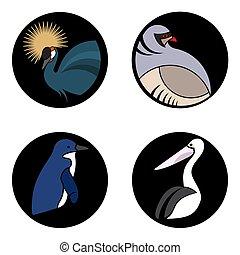 cercles, ensemble, clair, noir, logo, oiseaux