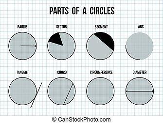 cercles, papier, parties, fond, math