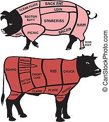 cerdo, norteamericano, carne de vaca, cortes