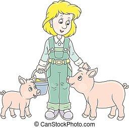 cerdos, granjero, alimentación