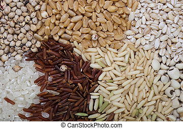 Cereal and grain selection of bulgur wheat, buckwheat, couscous, rye grain and brown and wild rice.