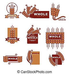 Cereal and whole grain bakery product vector icons templates...