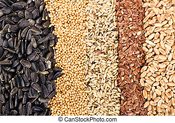 Cereal Grains and Seeds : Rye, Wheat, Barley, Oat,...