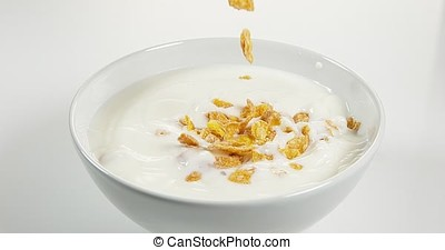 Cereals falling into a Milk Bowl, Slow Motion