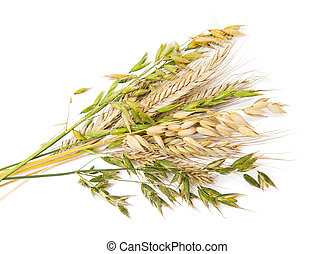 Cereals isolated on the white background