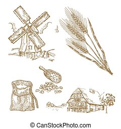 Cereals set. Hand drawn illustration windmill, wheat, farm house