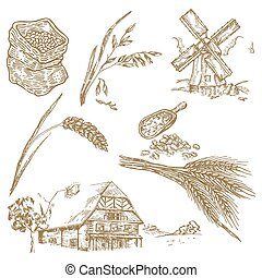 Cereals set. Hand drawn illustration windmill, wheat, oats,...