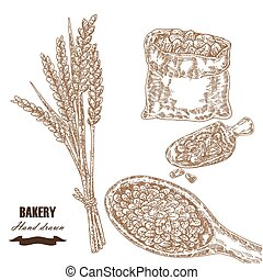 Cereals set. Hand drawn