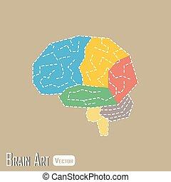 cerebellum, 脳, ), 正面, 時間的である, parietal, occipital, 解剖学, 丸い突出部, (, 茎
