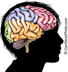 cerebro, concepto, niño joven
