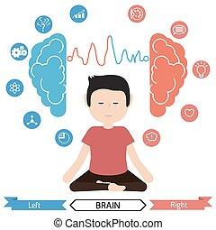 cerebro, derecho, ben, functions., izquierda