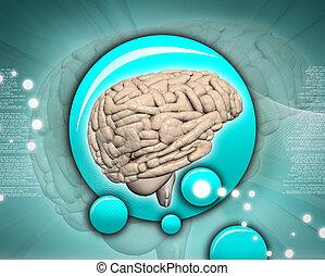 cerebro, en, resumen, plano de fondo
