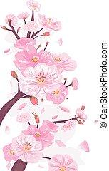 cereja, borda, flores