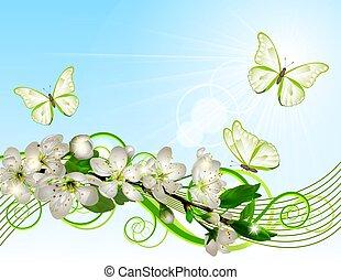 cereja, branca, florescer, flores, ramo