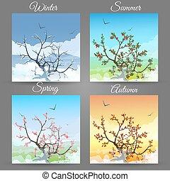 cereja, diferente, árvore, estações