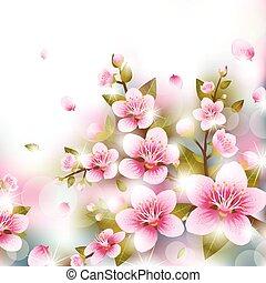cereja, ramos, flores