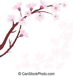 cereja, vetorial, ramo