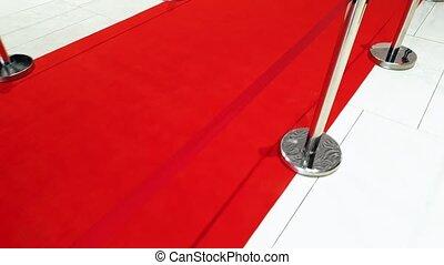 ceremonie, beeldmateriaal, lang, rood, fototoestel,...
