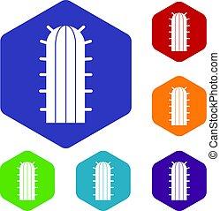 Cereus Candicans cactus icons set hexagon