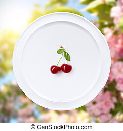 cereza, blanco, placa, contra, sakura, flores