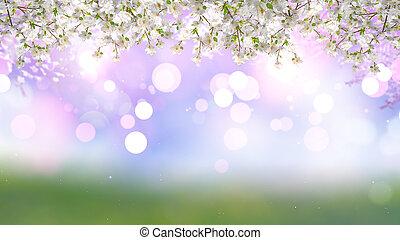 cereza, bokeh, 3d, luces de árbol