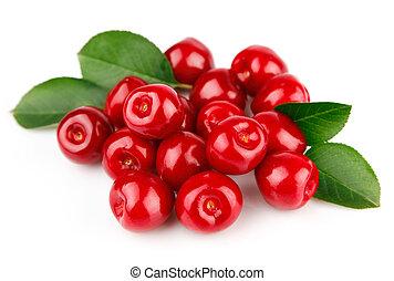 cereza fresca, fruits, con, hojas verdes