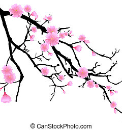 cereza, rama, flores