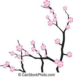 cereza, vector, oriental, branch.