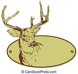 cerf, chasse, club, style, bannière, illustration