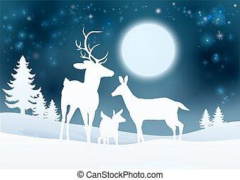 cerf, hiver, fond, scène