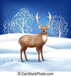 cerf, paysage hiver