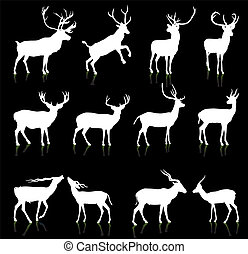 cerf, silhouette, collection