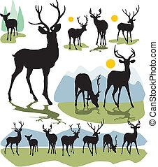 cerf, silhouettes, vecteur, ensemble