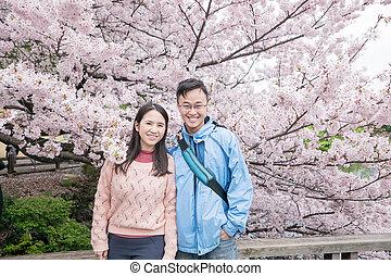 cerise, couple, fleurs