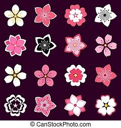 cerise, fleurs, ensemble, fleur, icônes